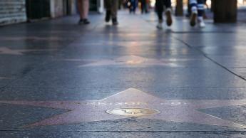 Alle wichtigen Stars sind vertreten...