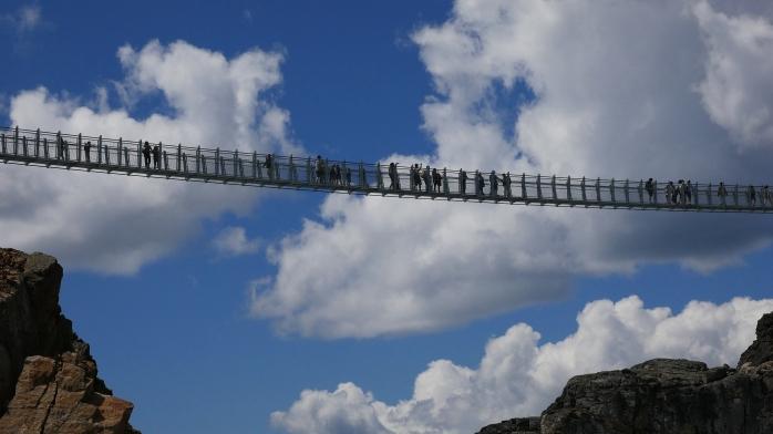 Bridge Whistler